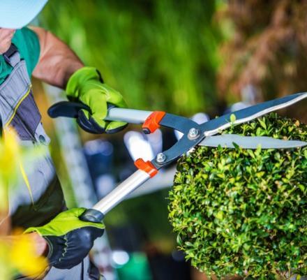 Jardinier paysagiste Cabourg